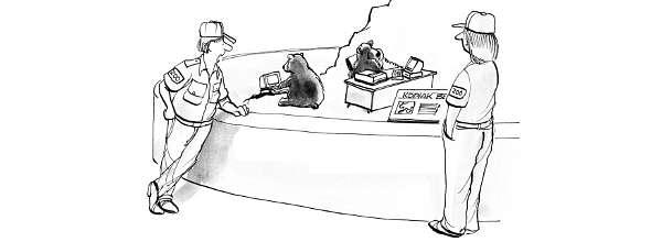 Cartoon: Tierpfleger beobachten erstaunt ihre Bären wie sie an Computern arbeiten