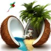 Relaxed in a coconut paradise / entspannt in einem Kokosnuss-Paradies