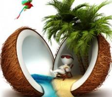 Relaxed in a coconut paradise / entspannt in einem Kokosnuss-Paradies