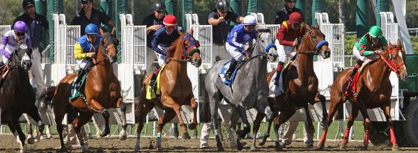 "Jockey Martin Garcia pilots ""Stirred Up"" at Santa Anita Race Track / Jockey Martin Garcia eilt mit "" Stirred Up"" auf der Santa Anita Rennbahn"